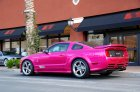Saleen Molly Pop Mustang